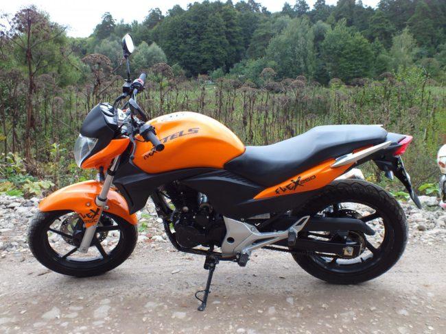 Фото бюджетного китайского мотоцикла Stels FLEX 250 на фоне природы