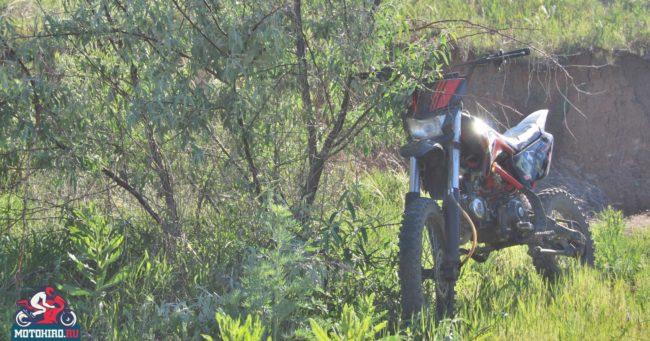 Мотоцикл для начинающих гонщиков IRBIS TTR 125 на фоне куста ивы